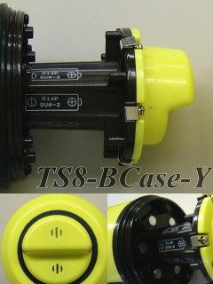 TS8-BCase-Y